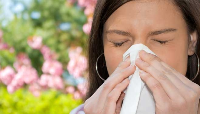 Hay Fever and Allergies